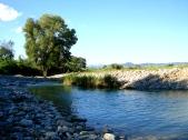 The Albegna River