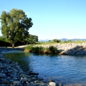 The Albegna River