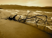 Giannella beach